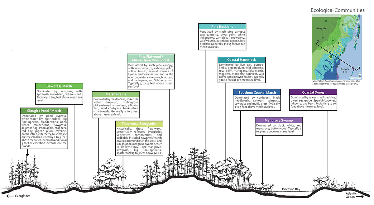 Landscape-Pattern-Book-Ecological-Transect
