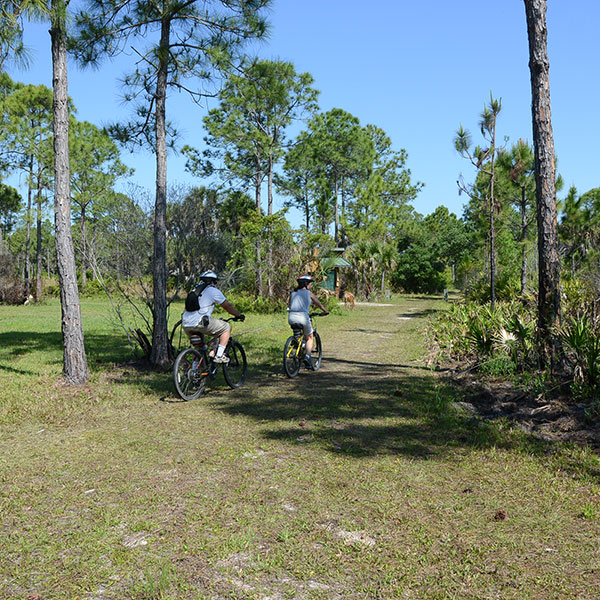 mountain bikers on Sarasota County natural lands