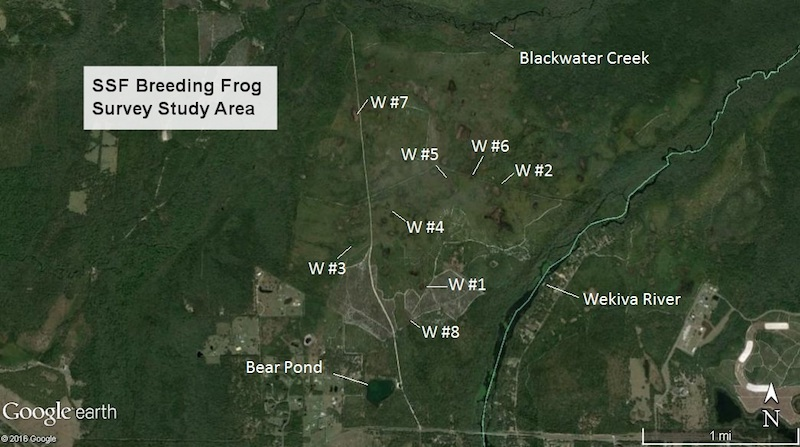 Breeding frog survey study area - Seminole State Forest